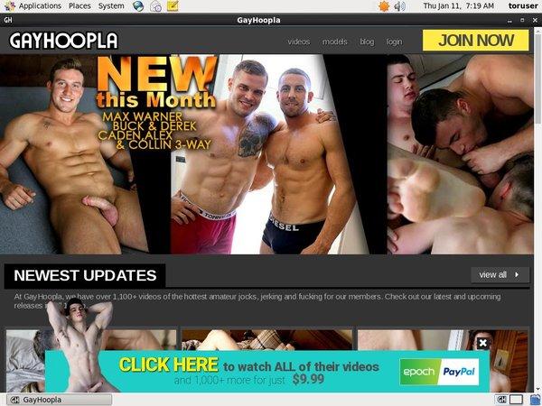 Gay Hoopla Account Paypal